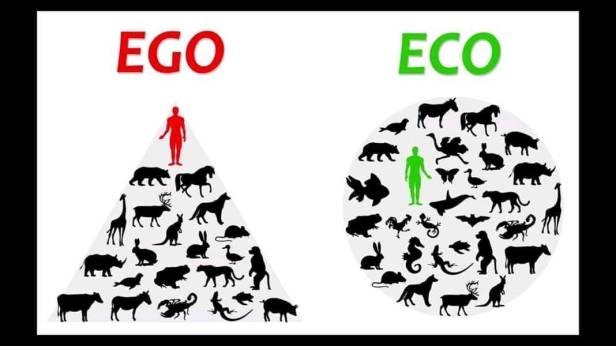 EGO EKO