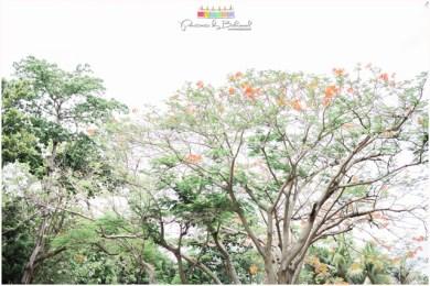 shangri-la mactan wedding, japanese wedding, beach wedding, destination wedding, bukool films, portraits by bukool, cebu destination wedding photographer and videographer
