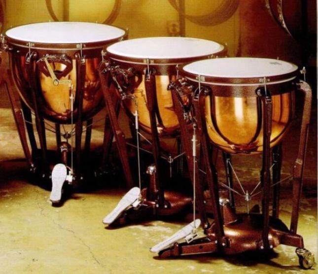Pengertian alat musik ritmis