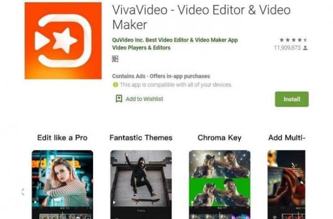 download viva video software