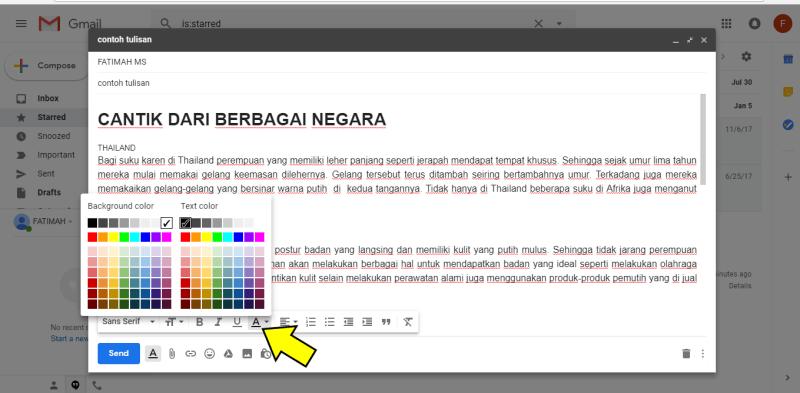 Pilihan format warna gmail di destop