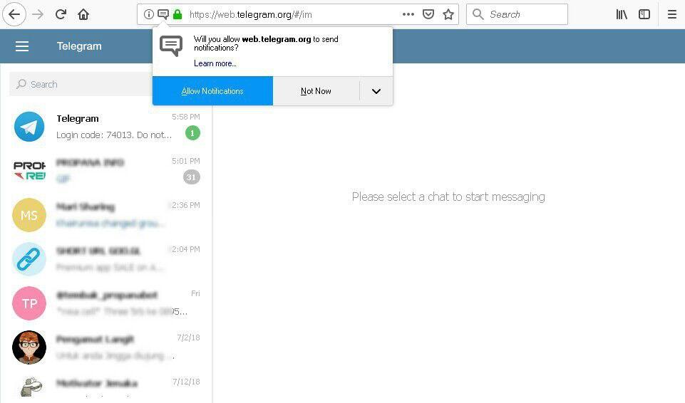 Gambar 5. Laman Web Telegram