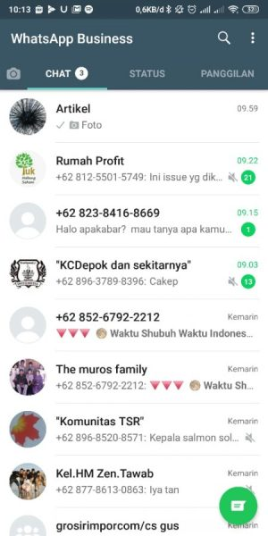 Warna latar Whatsapp Bisnis