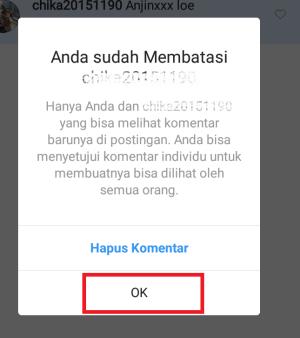 klik ok untuk setuju