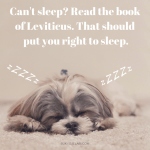 Can't Sleep? Read The Book of Leviticus!