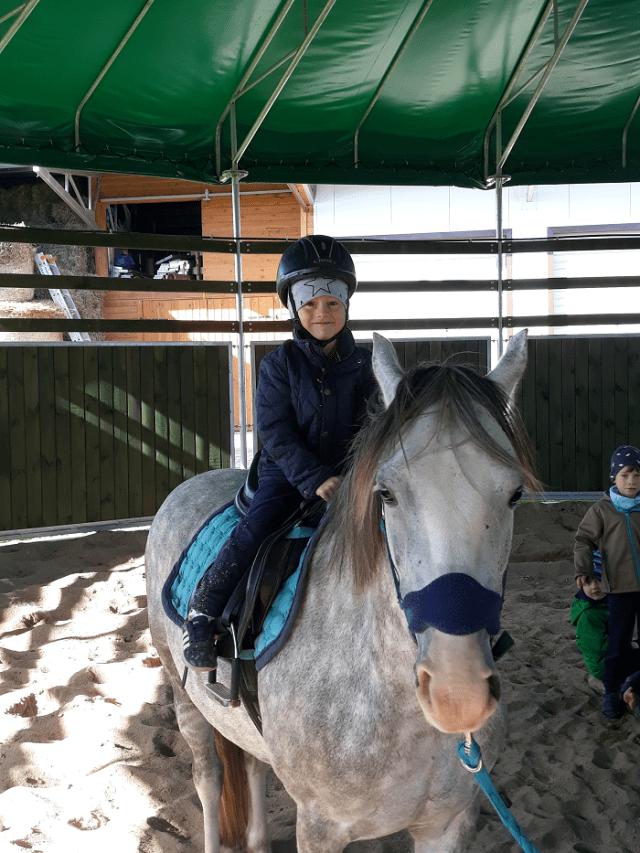 Koń jaki jest każdy widzi - czym jest hipoterapia