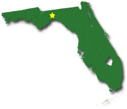 state of florida light bulb recycling location