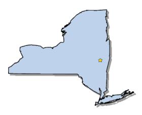 New York lamp recycling disposal