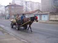 Traditional means of transportation. Our blok is in the background, viewed from the bus stop.