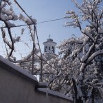 Bulgaria, winter: stork's nest waiting for spring