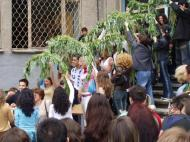 Procession under willow branches for good luck.