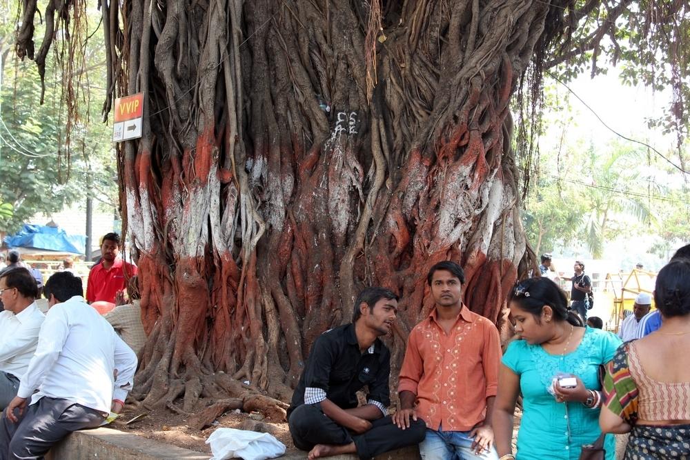 India Mumbai 07