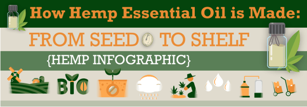 How Hemp Essential Oil is Made