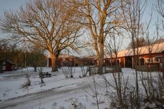 Vinter BA 2