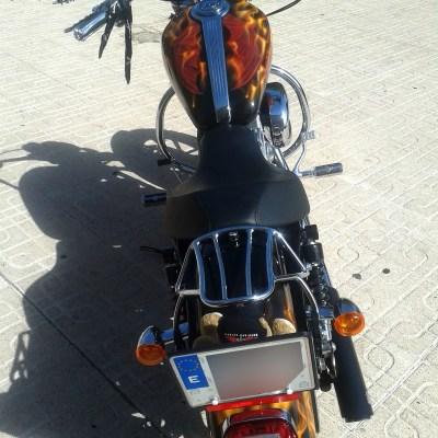 Harley Fuego (5)