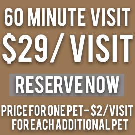 60 minute pet sitting visit $29.00