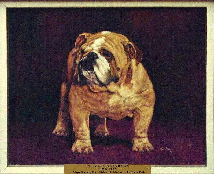 Best of Breed: Ch. Mapo's Sandman