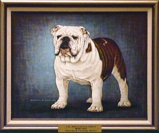 Best of Breed: CH Milcoats Titus