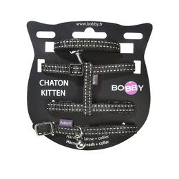 Pack Chaton Safe
