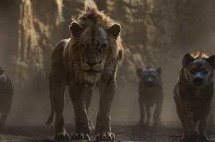 Le Roi Lion de Jon Favreau image film cinéma