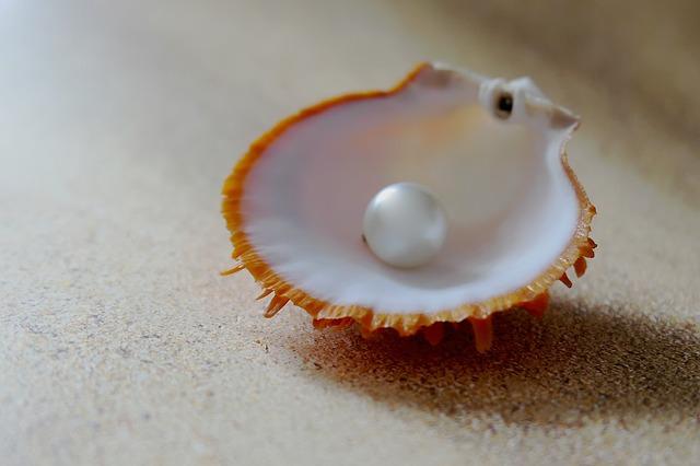 Similarities Between a Pearl and the Church