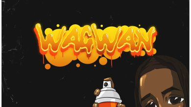Photo of Music: Laycon – Wagwan
