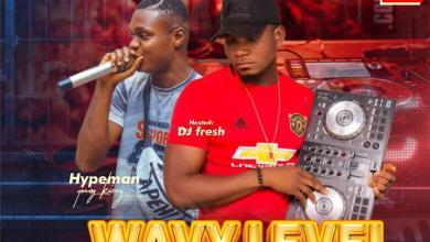 Photo of Mixtape: Deejay Fresh & Youngkizzy – WAVY LEVEL MIX