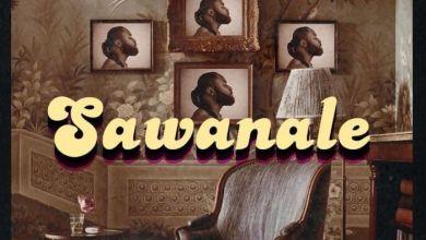 Photo of Music: Harrysong – Sawanale