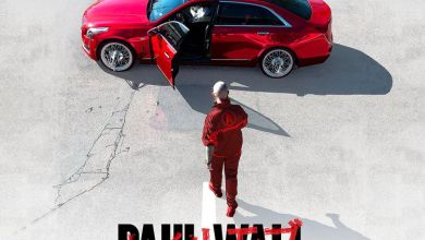 Photo of ALBUM: Paul Wall – Hall of Fame Hustler Zip