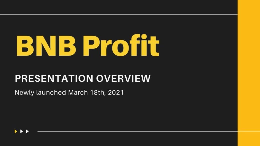 bnb profit