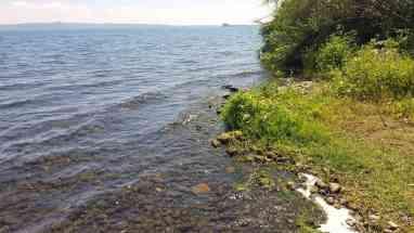 Lago di Bolsena Badestelle