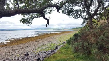 Beauty Firth Schottland