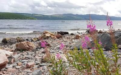 Loch Ness mit Kind & VW-Bus – Bootstour und ein Schlafplatz am Wasser