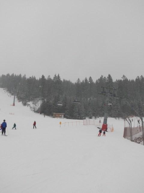 Winter am Großen Arber