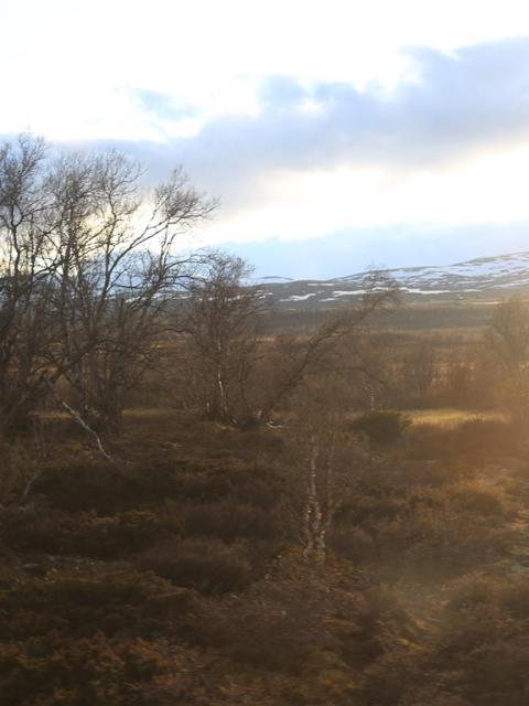 Norwegen Reiseblog
