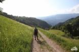 Wanderung Südtirol Seis