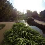 """Japanische Garten auf der """"Margareteninsel"""