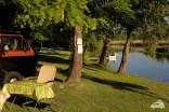 Auf dem Campingplatz in Mosonmagyarovar genießen wir die Abendstimmung