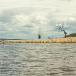 Wir paddeln Fluß aufwärts bis an die Mündung des Zuflußes. Hier ist alles sehr ruhig und es gibt reichlich Tiere zu beobachten