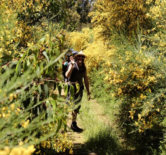 Wanderung im Monchique Gebirge vom Foia