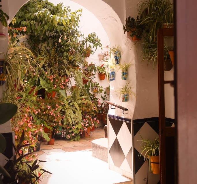 Reisebericht Andalusien