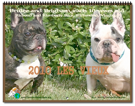 Cover of the 2010 Old French Bulldogs Wall Calendar