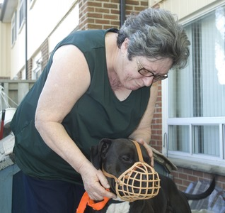 Rambo and Maria Gaspar, the day the dog was released after more than three months in the city's animal shelter. The family wants to know how two of Rambo's ribs were broken.
