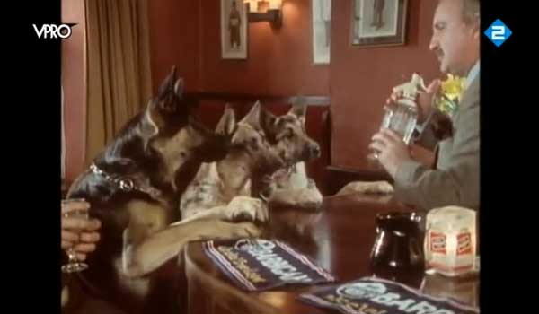 Three german shepherds walk into a Pub