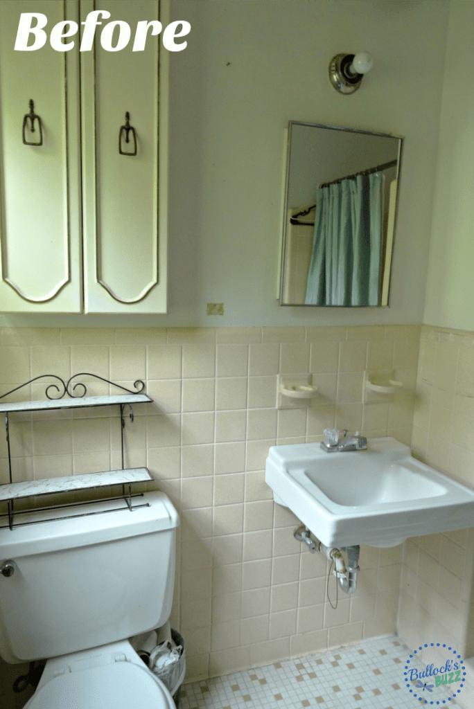 1960s Ranch Bathroom Remodel  Delta Linden Lavatory Faucet