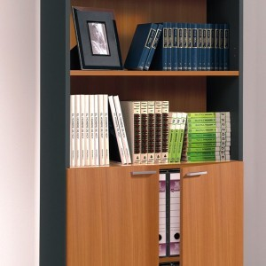 Nut Brown and Office Grey Enclosed Bookcase With Doors191