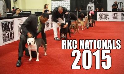RKC Nationals 2015