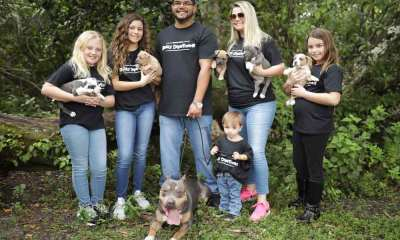 South Florida Bully Department: American Bully Breeder | Florida