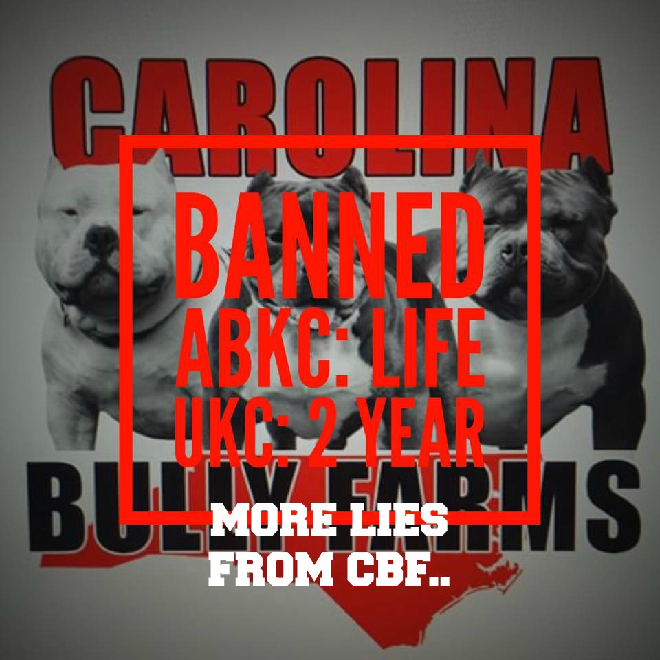 More Lies From Carolina Bully Farms