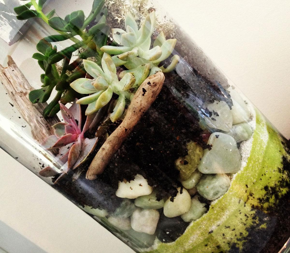 Terrarium-2018-Bucket-List-By-Bumble-and-Bustle-Blog